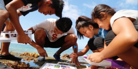 kids doing research at beach