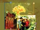 yir2010cover