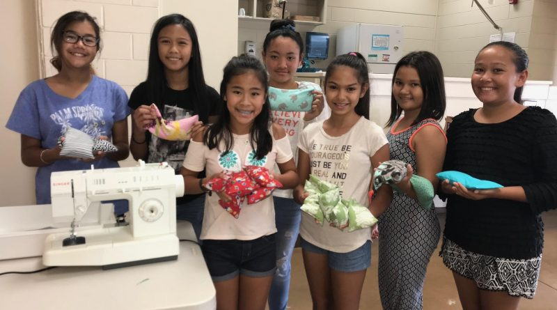 Wailani Diamonds November Meeting Sewing Project