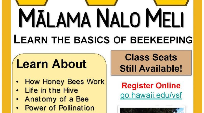 Bee Program Flyer