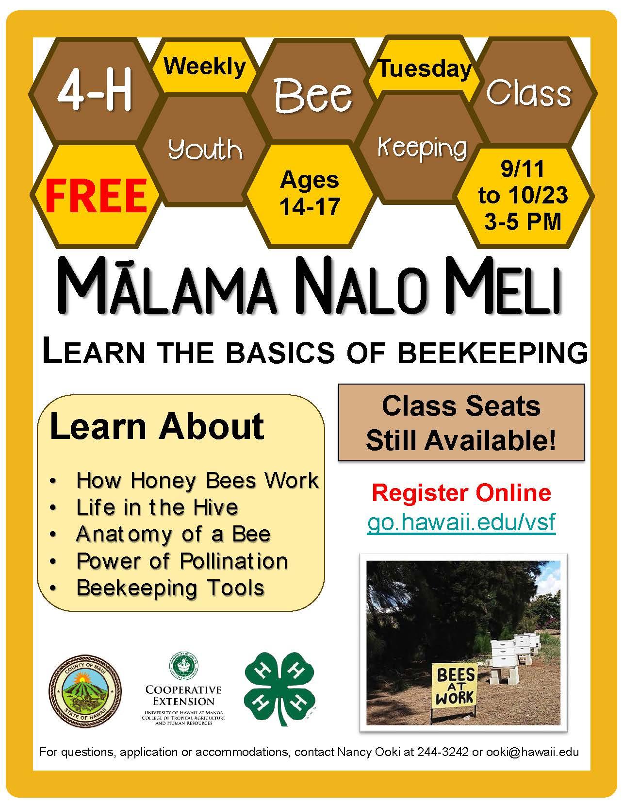 Bee Program Flyer