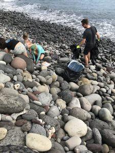 Removing trash from the rocks at the Waihee Dunes