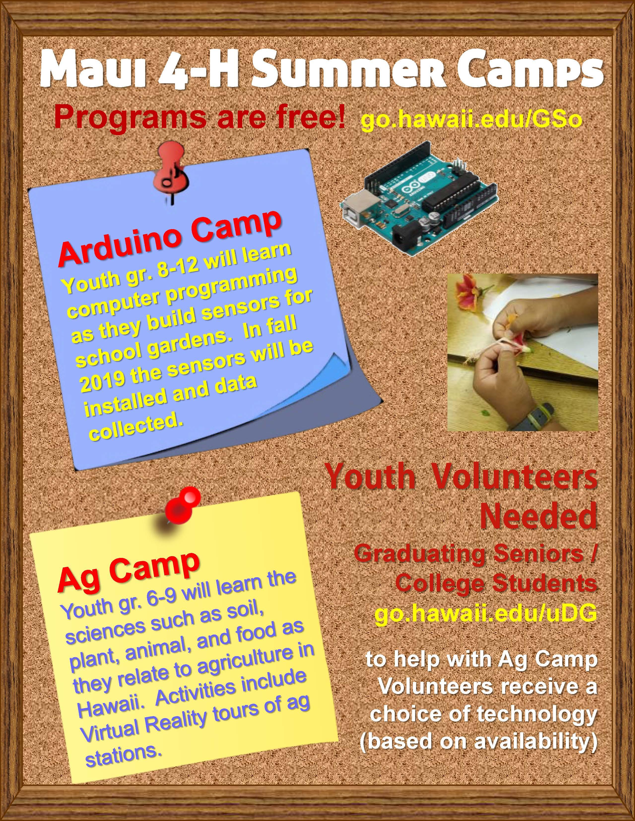 Flyer outlining summer camp programs