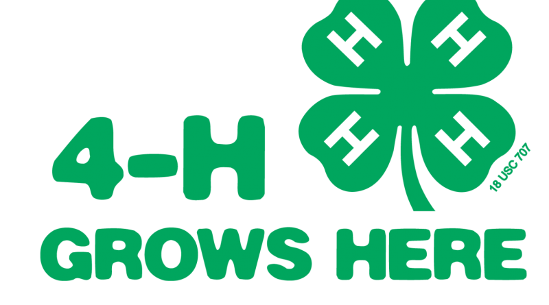 4-H Grows Logo