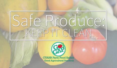 safe produce ico