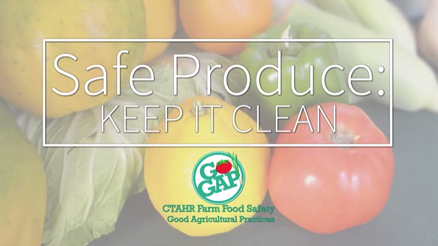 Safe Produce Keep Is Clean