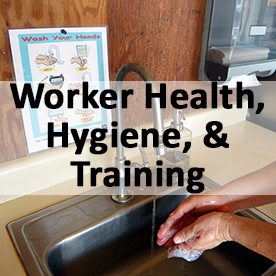 Worker Health Hygiene and Training