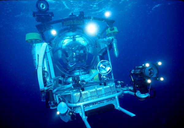 <p><strong>Fig. 9.1.</strong> Deep-sea submersibles, specially designed to deal with the challenging work conditions underwater, are able to explore the ocean depths.</p>