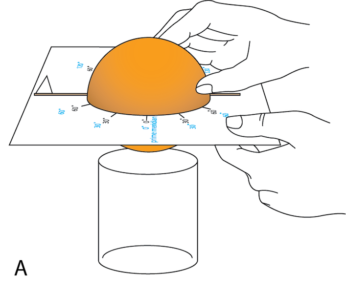 <p><strong>Fig. 1.21.</strong> (<strong>A</strong>) Place the orange in the template.</p>