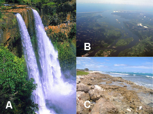 <p><strong>Fig. 2.12.</strong> (<strong>A</strong>) Wailua Falls, Kaua&lsquo;i, Hawai&lsquo;i (<strong>B</strong>) Columbia River estuary, Oregon (<strong>C</strong>) Barber&rsquo;s Point tide pools, O&lsquo;ahu, Hawai&lsquo;i</p>