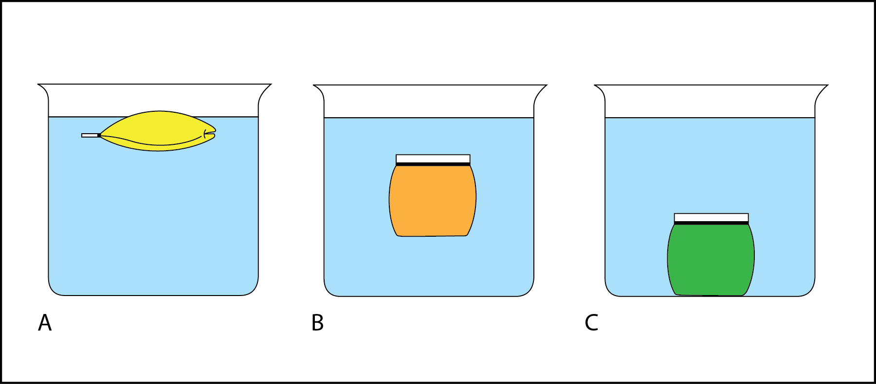 <p><strong>Fig. 2.3. </strong>(<strong>A</strong>) The bag filled with yellow liquid is floating on the surface. (<strong>B</strong>) The bag filled with orange liquid is floating in mid-water (subsurface floating). (<strong>C</strong>) The bag filled with green liquid has sunk to the bottom of the beaker.</p>