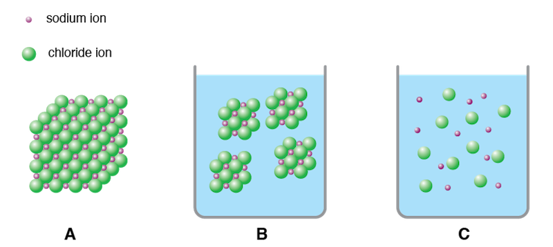 <p><strong>Fig 2.33.</strong> Dissolution and dissociation of sodium chloride. Sodium and chloride ions in (<strong>A</strong>) a large crystal, (<strong>B</strong>) dissolved in water as smaller crystals, and (<strong>C</strong>) dissociated in water.</p>