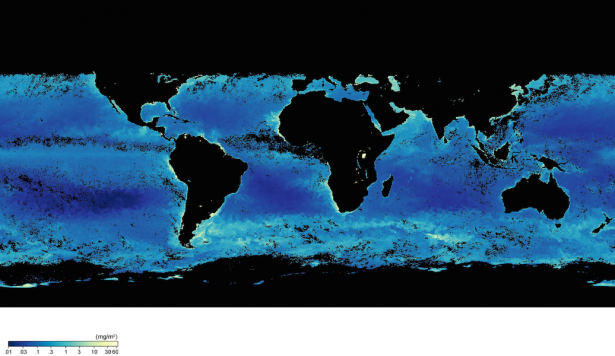 <p><strong>Fig. 9.17.</strong> Map of global sea surface chlorophyll concentration. Chlorophyll concentration (mg/m<sup>3</sup>) is an indication of the density of photosynthetic organisms, such as phytoplankton, in the epipelagic zone.</p><br />
