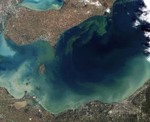 <p><strong>Fig. 2.18.</strong> (<strong>A</strong>) A satellite image of an algae bloom in Lake Erie shows swirls of phytoplankton microalgae.</p><br />