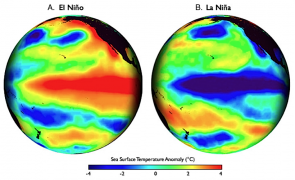<p><strong>Fig. 3.27.</strong> Global maps of the Pacific ocean basin show patterns of sea surface temperature during (<strong>A</strong>) El Niño and (<strong>B</strong>) La Niña events. Sea surface temperature is presented as compared to long-term average values in those locations. The red- and blue-colored streaks along the equator illustrate hotter-than-average and colder-than-average sea surface temperatures associated with El Niño and La Niña events, respectively.</p><br />