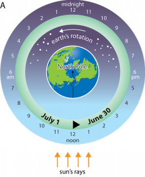 <p><strong>Fig. 1.15</strong> (<strong>A</strong>) A north polar view of earth showing the international date line and time.</p><br />