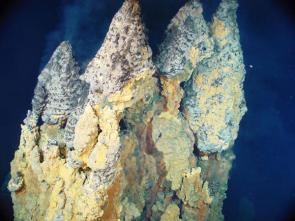 <p><strong>Fig. 7.64.</strong> Deep sea chimneys measuring 9 m tall from base to tip, East Diamante Volcano, Marianas Islands Marine National Monument. Chimneys form at hydrothermal vents when particles dissolved in the superheated fluid from the vent meets cold ambient water and precipitates out.</p><br />