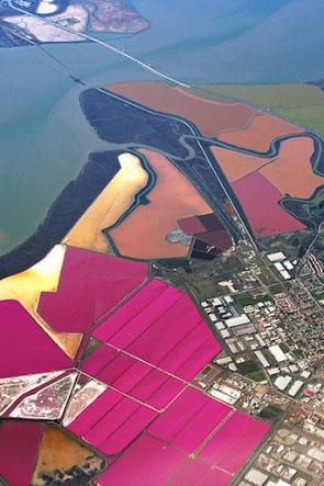 <p><strong>SF Fig. 2.4.</strong> (<strong>C</strong>) Aerial view of evaporation ponds near southern San Francisco Bay, California.</p><br />
