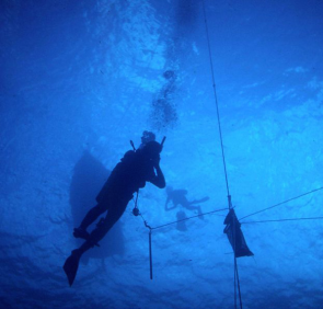 <p><strong>SF Fig. 9.4.</strong> (<strong>A</strong>) Scuba divers are attached to a central buoy by ropes.</p><br />