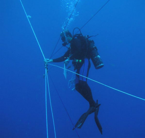 "<p><strong>SF Fig. 9.4.</strong> (<strong>B</strong>) One diver coordinates the rope-pulley system called a ""trapeze"".</p><br />"