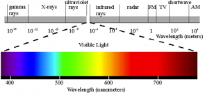 <p><strong>Fig. 2.40.</strong> This diagram of the electromagnetic spectrum emphasizes the small portion of the spectrum that is visible to human eyes. Wavelengths are measured in meters (m) along the grey bar and in nanometers (nm) along the colored bar showing visible light.</p><br />