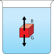 "<p><strong>Fig. 2.5.</strong> Forces on a red block in water. The buoyant force is represented by the letter ""B"" and the upward pointing arrow. The gravitational force is represented by the letter ""G"" and the downward pointing arrow.</p><br />"