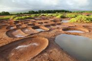 <p><strong>SF Fig. 2.6.</strong> (<strong>A</strong>) Salt evaporation ponds in Hanapepe, on the island of Kaua'i, Hawai'i.</p><br />