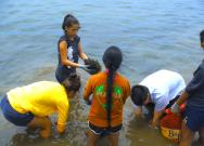 <p><strong>SF Fig. 2.6.</strong> (<strong>C</strong>) Students from local community group Nā Pua No'eau remove invasive algae near the shoreline.</p><br />