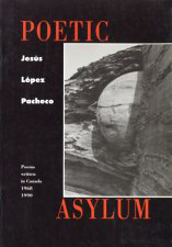 Poetic Asylum