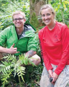 Reintroducing Cyanea plant