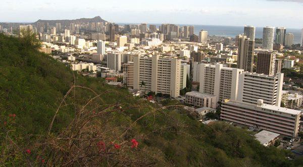 Honolulu skyline and grass