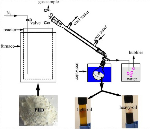 The schematic diagram of reaction and distillation apparatus, and the appearance of polyhydroxybutyrate, light-oil and heavy-oil.