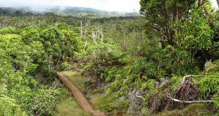 La Niña events no longer bring excess rainfall to Hawaiʻi (courtesy Wikimedia Commons)
