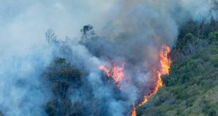 Flames move uphill in Oʻahu wildfire