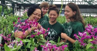 AgDiscovery students in greenhouse with orchid specialist Teresita Amore.