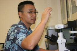 Tao Yan in his lab at UH Mānoa