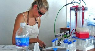 Katie Barott filtering water for microbial counts on the ship in the Line Islands. (photo by: Forest Rohwer)