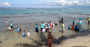 Volunteers at Waikīkī reef clean up, photo from the Waikīkī Aquarium Facebook