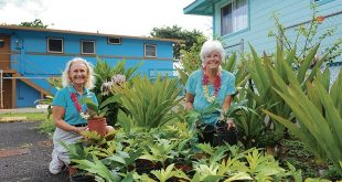Diane Ragone (left) distributing ʻulu in Hauʻula