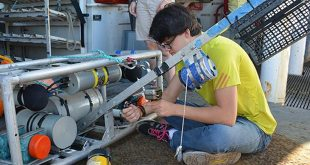 Lindsay preparing cameras for deployment on a NOAA ship.