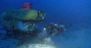Diver, lead author Richard Pyle, and HURL's submersible explore deep reefs. (photo credit: Robert K. Whitton)
