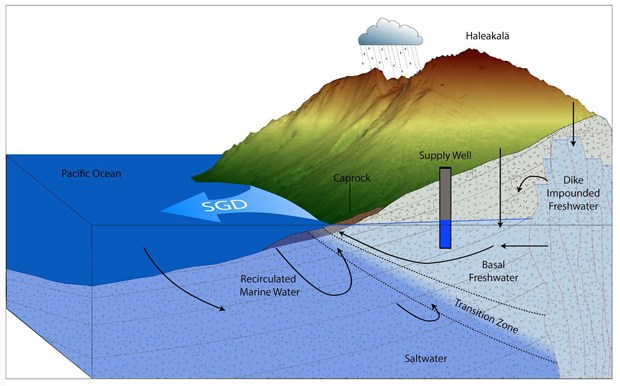 Schematic of submarine groundwater discharge. (credit: Bishop, et al., 2015)