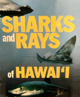 Sharks and Rays of Hawaii Book Cover