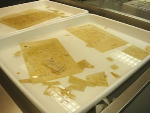 Maps soaking in a tray