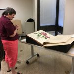 Sharon Harwood looking at a large format rare book with an image of a flowering plant