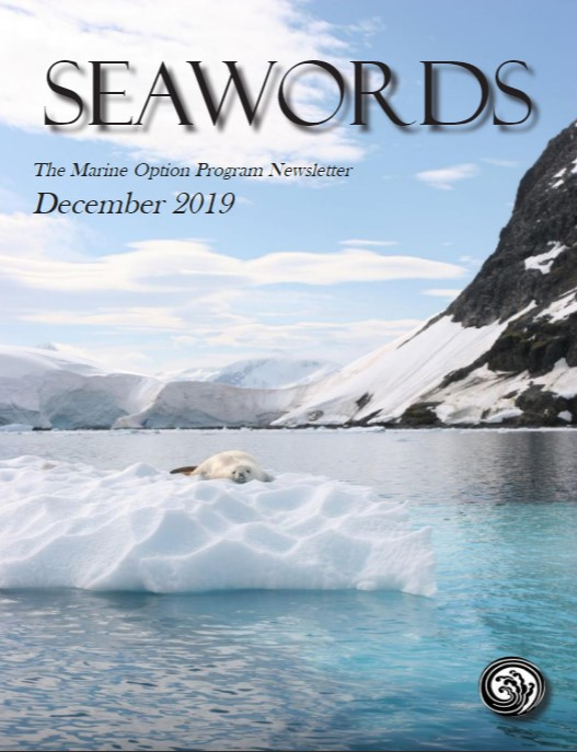 Seawords December 2019