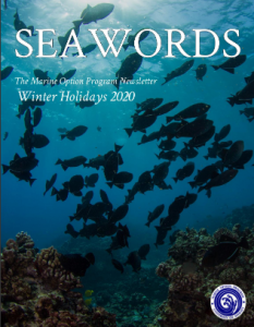 Image of a school of fish; the cover of the winter Seawords issue.