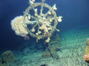The USS Kailua, including the ship's wheel, is surprisingly intact. Credit: UH HURL.