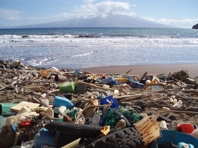 <p>Fig. 2. Marine debris washed up and scattered on a beach in Kanapou Bay, Hawai'i.&nbsp;</p>