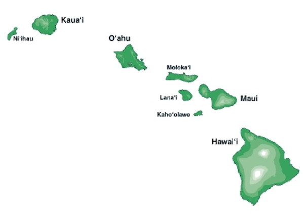 <p>Fig. 4. The Hawaiian Island chain. Can you recreate this in your model?</p>